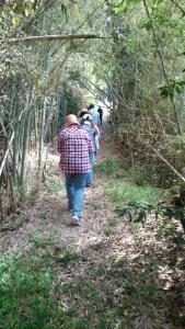 竹林道の行進風景